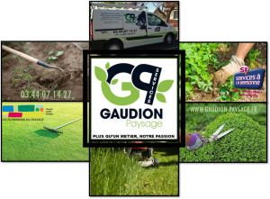 gaudion-paysage-services-a-la-personne-entretien-jardin-jardinage-oise-somme-beauvais-amiens-Cyria-Services-Cyriadom-Cyriavie