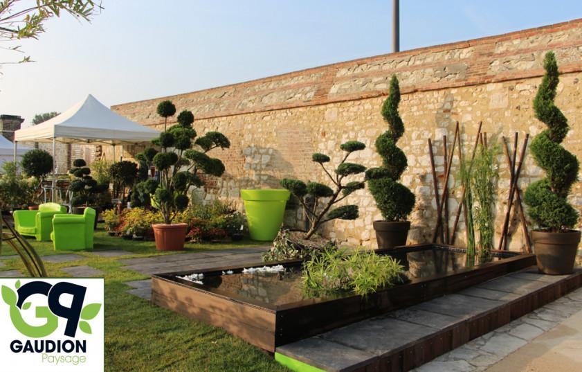 Nettoyage aide domicile espaces verts gaudion for Tarif entretien espace vert particulier
